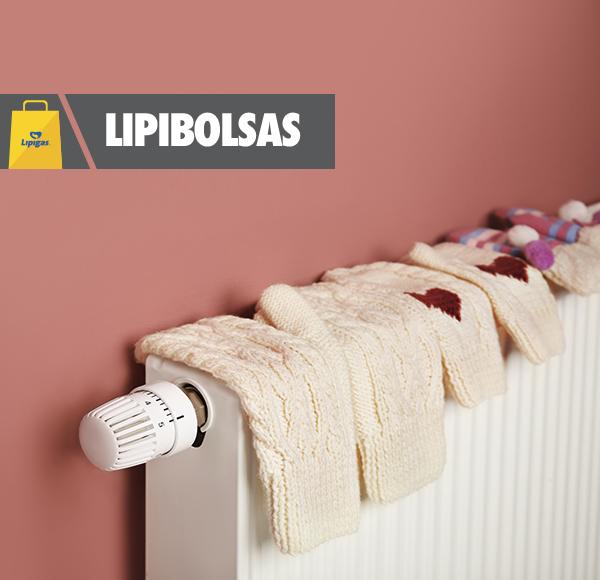 Bases Legales - Lipibolsas 2017